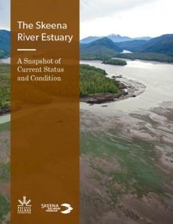 Skeena River Estuary - Snapshot