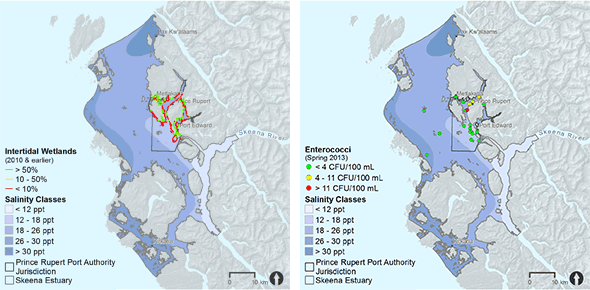 Skeena-watershed-estuary-data-samples